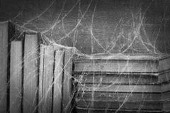 books cobwebs